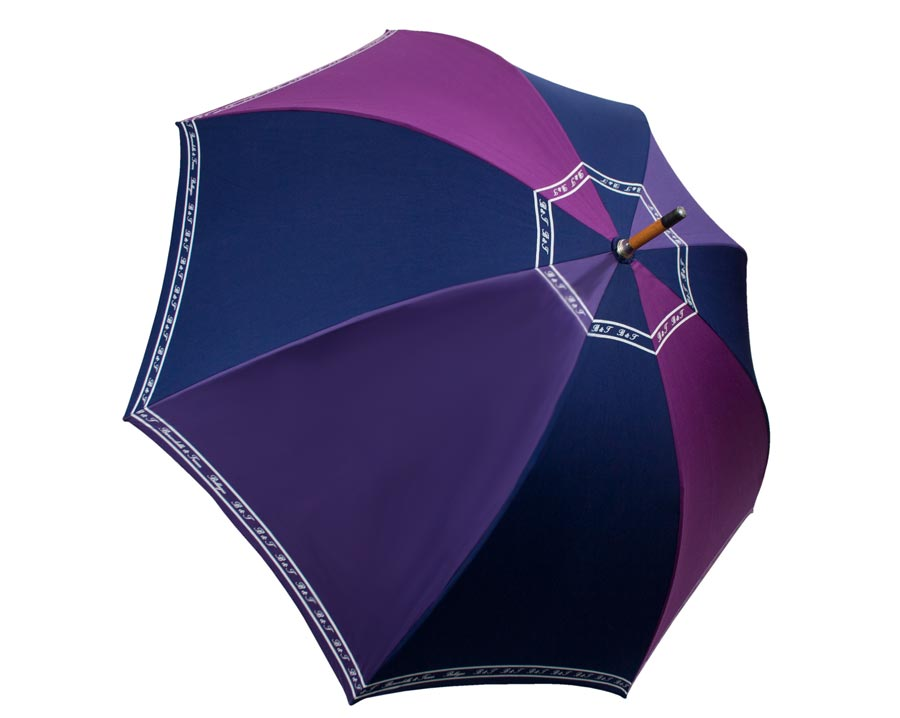 Umbrella with purple and blue segments